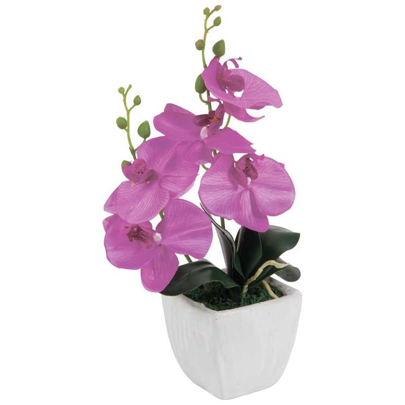 Ваших, цветы интернет магазин петербург